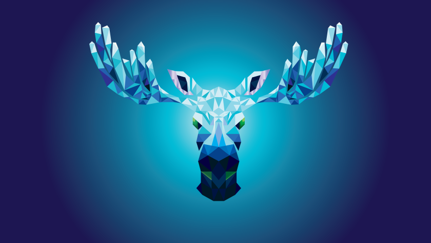 lil-moose